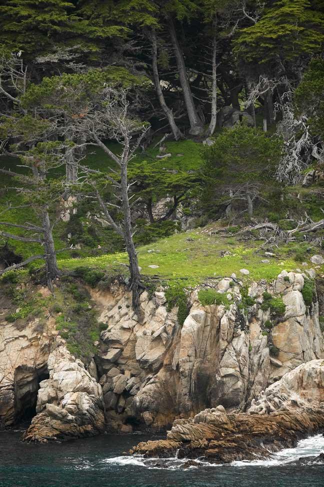 L'attribut alt de cette image est vide, son nom de fichier est comparaison-1920-Point-Lobos-cliff.jpg.