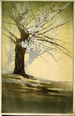 1917 (cat 66) Frost